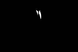team, silhouettes, corporate